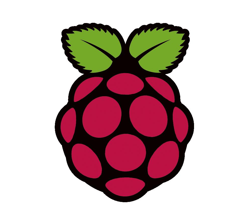 raspberry pi logotipas